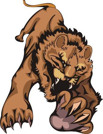 uncontrollable: Tiger before a jump. Big cats.   Illustration