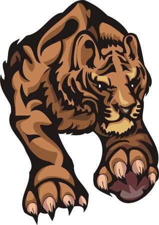 dangerously: Important striding quiet tiger. Big cats.