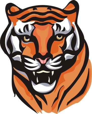 printing logo: The annoyed shown tigress.Big cats.  Illustration