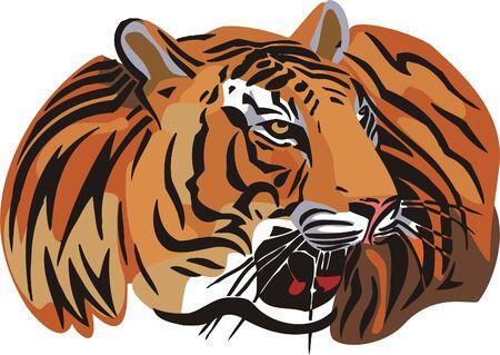 dangerously: The orange tiger lays. Big cats.  Illustration