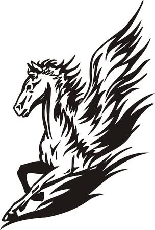 the mane: Horse Illustration