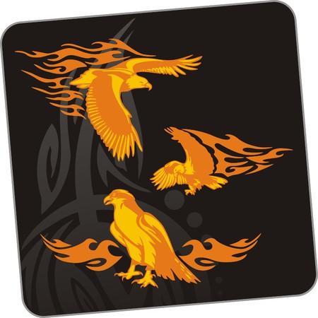 vinyl cutting: Eagle - predatory bird. illustration. Ready for vinyl cutting.