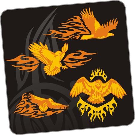 predatory: Eagle - predatory bird  illustration. Ready for vinyl cutting. Illustration