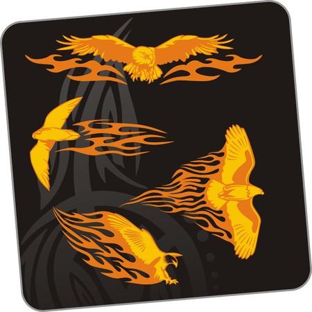 Eagle - predatory bird.  illustration. Ready for vinyl cutting. Stock Vector - 8199689