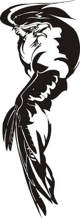 f�nix: �guila - aves predadoras. ilustraci�n. Listo para el corte de vinilo. Vectores