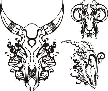 constelaciones: Cr�neo de un animal con cuernos y la memoria ram. Zodiaco de fantas�a.