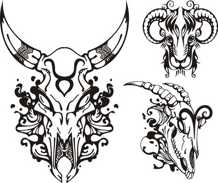 fire skull: Skull of a horned animal and the ram. Fantasy Zodiac.