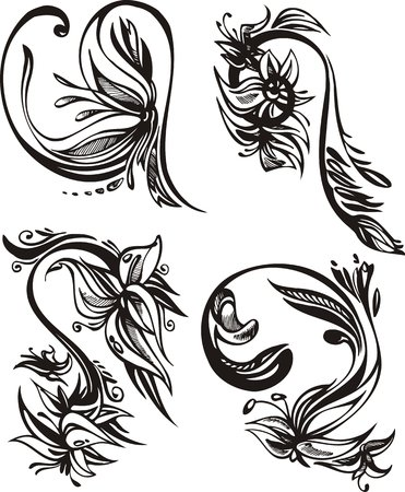 Four flowers of a narcissus. Flowers and leaves.  Vector