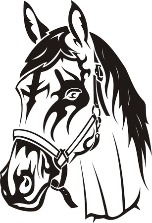 vinyl cutting: Beautiful Horse.Vector illustration ready for vinyl cutting. Illustration