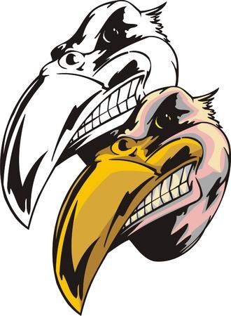 Bird of prey with big yellow sharp beak. Mascot template. Vector illustration - color + bw versions.