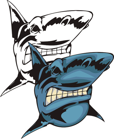 Predatory blue shark with a huge teeth and greater fins. Mascot template. Vector illustration - color + bw versions.