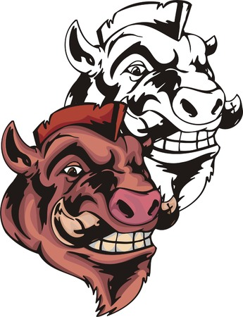 Adult wild boar with powerful fang and pank hair. Mascot template. Vector illustration - color + bw versions.