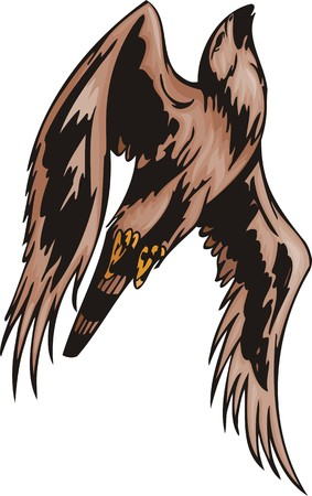 The falcon with brown plumage. Predatory birds. illustration - color b/w versions.