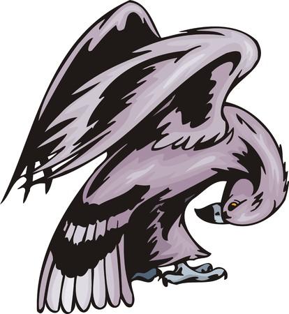 coloration: The big eagle with a violet coloration. Predatory birds.   illustration - color   bw versions. Illustration