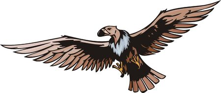 scavenger: Griffin - scavenger with a long pink neck.  Predatory birds.   illustration - color   bw versions.