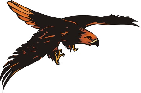 The eagle with orange plumage attacks the purpose.  Predatory birds.   illustration - color   bw versions. Vector