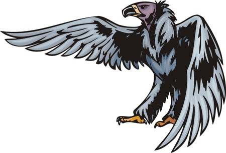 Griffin with dark blue plumage.  Predatory birds.   illustration - color   bw versions. Vector