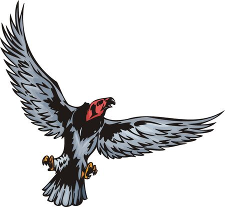 The big griffin with the opened wings. Predatory birds. illustration - color b/w versions.
