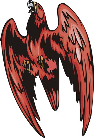 The eagle with red plumage attacks the purpose. Predatory birds.  illustration - color   bw versions. Vector