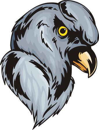Head of northern buzzard with the big comb. Predatory birds.  illustration - color   bw versions. Vector