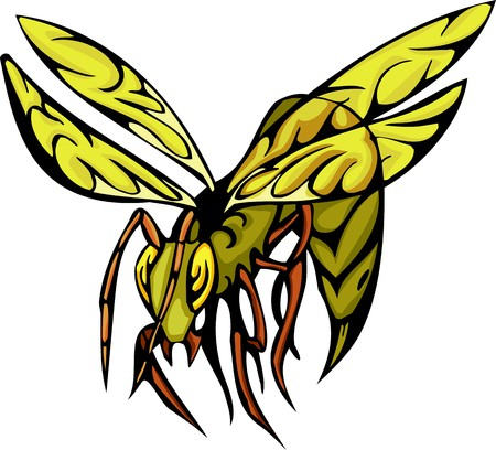 Beetles.Predatory Insects Clip art. illustration ready for vinyl cutting.