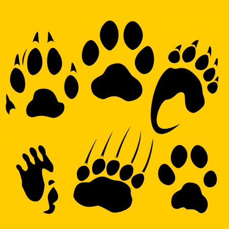Footprints set - vinyl-ready illustration  Vector