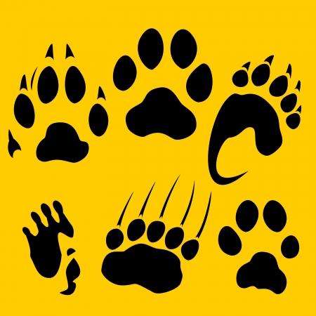 bear paw: Footprints set - vinyl-ready illustration