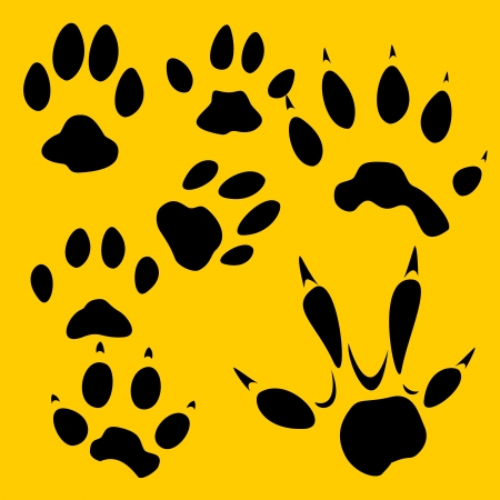 lion drawing: Footprints set - vinyl-ready, illustrazione