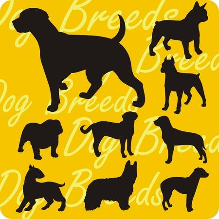 shepard: Dog breeds - vinyl-ready vector illustration