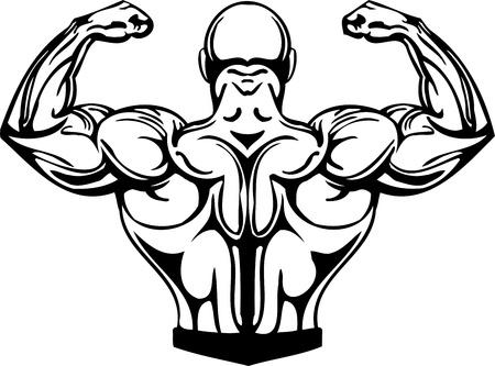 muskelaufbau: Bodybuilding und Kraftdreikampf - Vektor-Illustration. Illustration