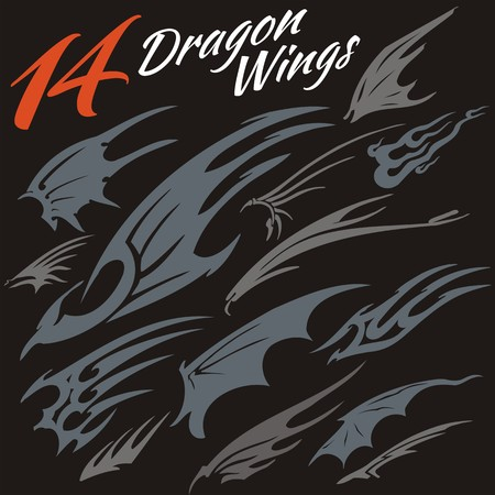 14 vector wings of the dragon. Vector set. Vector