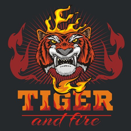 head wise: Tiger head hand and fire - vector illustration