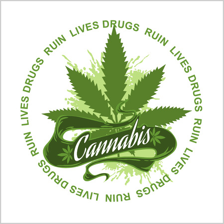 marijuana plant: Marijuana - cannabis for medical use. Drugs Ruin Lives.