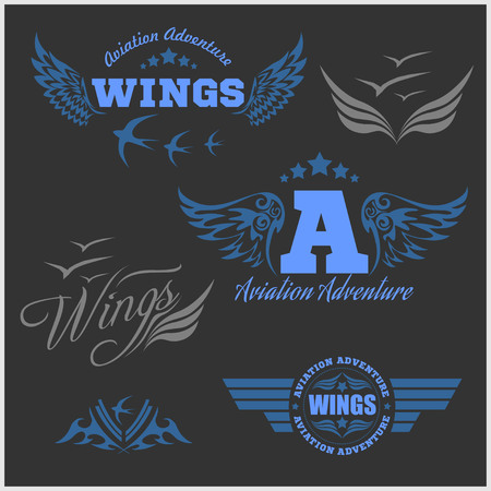 fashion story: Air Force shields and labels with wings isolated on dark