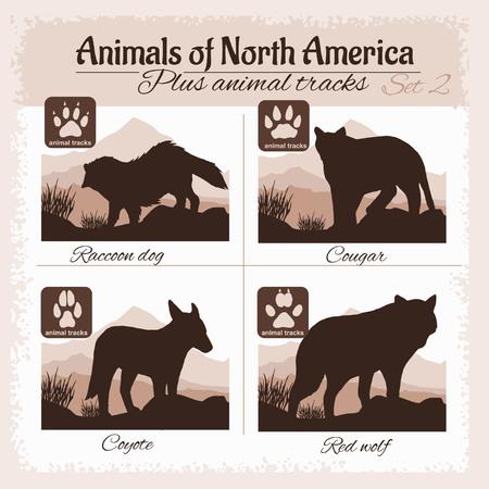 huellas de animales: animales Am�rica del Norte y huellas de animales, huellas. set vector. Vectores