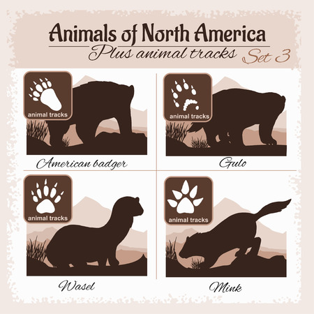 animal silhouette: North America animals and animal tracks, footprints. Vector set.