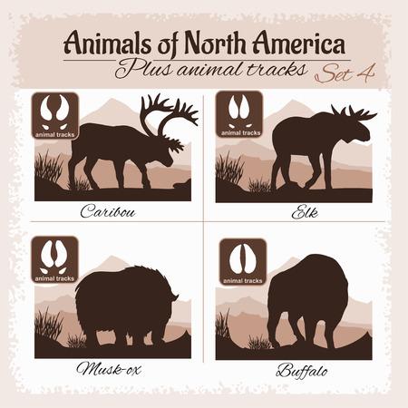Noord-Amerika dieren en dierlijke sporen, voetafdrukken. Vector set.