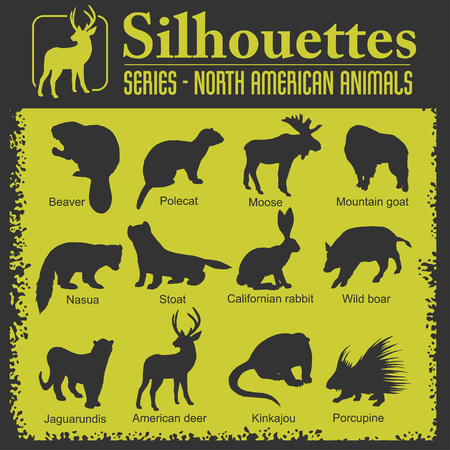 stoat: Silhouettes - Isolated North American animals. Vector set. Illustration