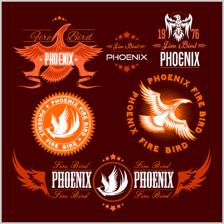 Phoenix - fire birds and flames . Vector set of abstract concepts, design and emblems on dark background.