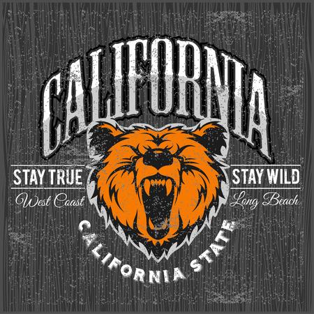 typographie cru Wild and Free avec une tête d'un ours grizzly, graphiques t-shirt impression sur grunge fond en bois