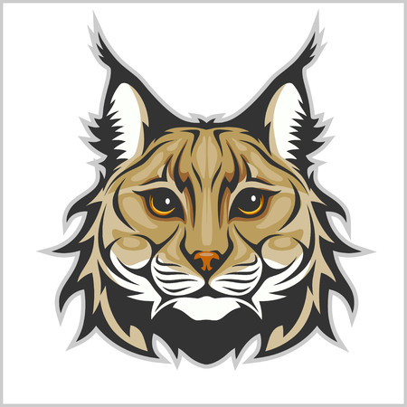 Lynx mascot logo. Head of lynx isolated vector illustration.
