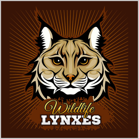 Lynxes - vector emblem. Lynx Wildcat mascot illustration Illustration