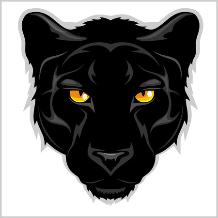 Black Panther head - isolated on white background. Illustration