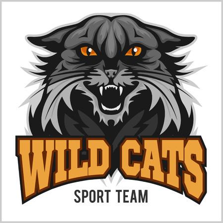 bobcat: Wildcat mascot - sport team. Isolated on white