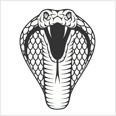 Cobra head - black and white ilustration. Isolated on white.