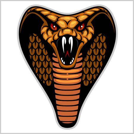 snake head: Snake head on white - vector illustration