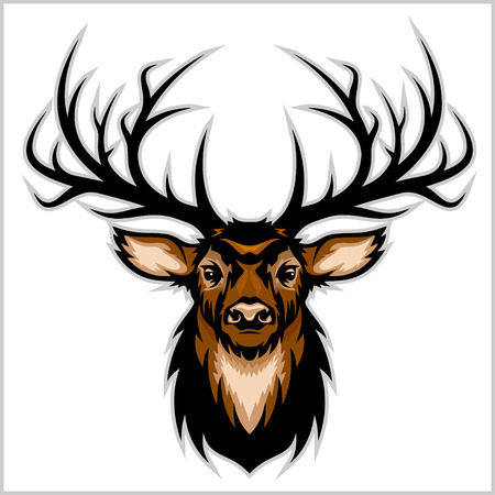 whitetail deer: Deer Head. Vector Illustration.