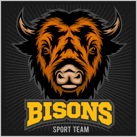 buffalo bison: Buffalo head with horns. Logo for any sport team bison Illustration
