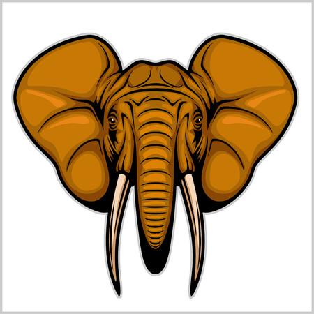 elephant angry: Elephant head. Isolated on white. Illustration