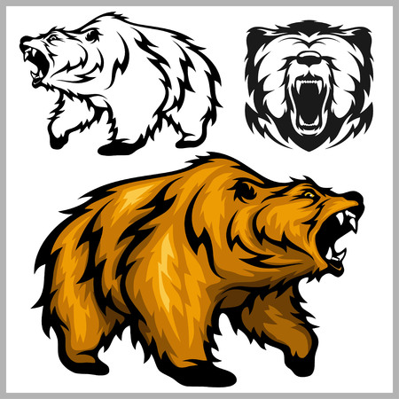 Color vector illustration of  Grizzly bear